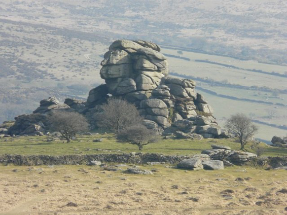The rock formation of Vixen-Tor surrounded by grassy fields